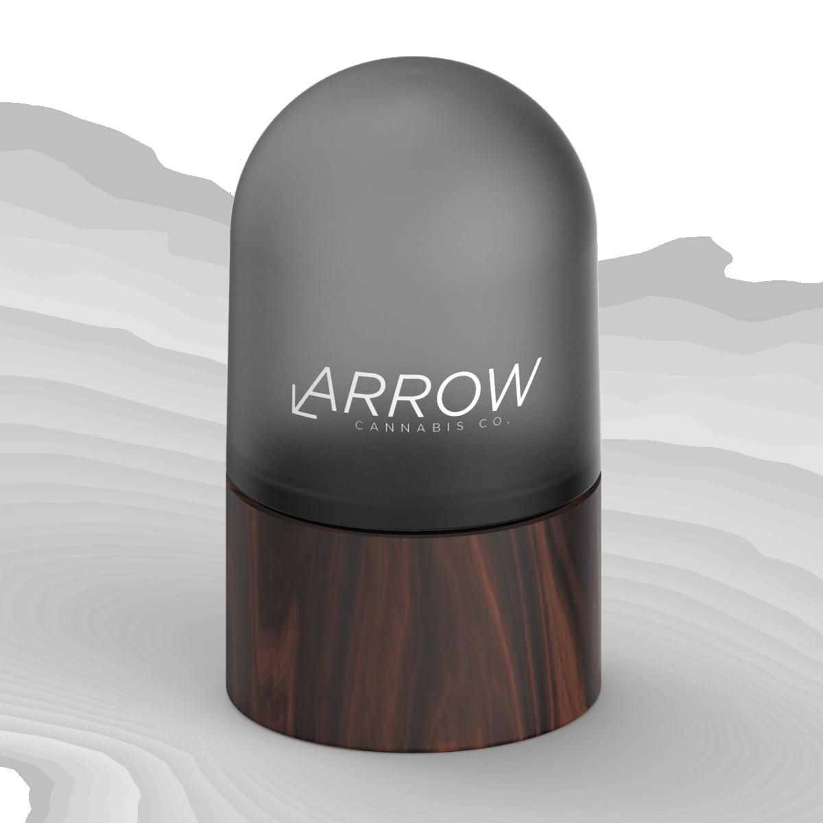 070220_PG_Render_Dome__Arrow